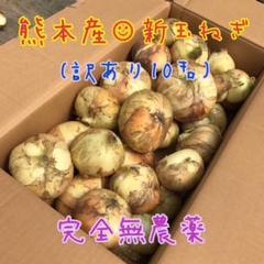 "Thumbnail of ""No.39 熊本県産新玉ねぎ 訳あり10キロ完全無農薬 産地直送"""
