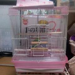 """Thumbnail of """"鳥かご マルカンバードパレスピンク"""""""
