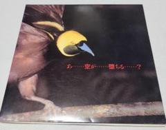"Thumbnail of ""YBO2 空が堕ちる / WARCHILD(7インチレコード)"""