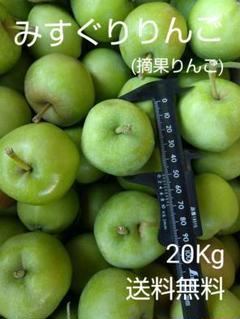 "Thumbnail of ""みすぐりりんご20Kg"""