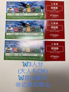 "Thumbnail of ""開催中!世界の昆虫展@近鉄和歌山チケット3枚"""