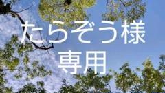 """Thumbnail of """"特別支援教育教材 算数カード 赤 読み無し 1~10まで"""""""