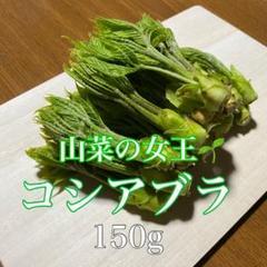 "Thumbnail of ""信州 天然山菜  150g+おまけ付き! 5/ 8収穫 新鮮!"""