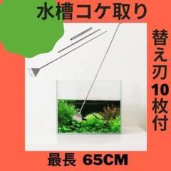 """Thumbnail of """"水槽スクレーパー 水槽クリーナー 替え刃付 三段式 コケ取り 65cm"""""""