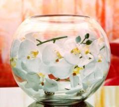 """Thumbnail of """"金魚鉢 ガラス製 花瓶 アクアリウム テラリウムに 22cm 新品訳あり"""""""
