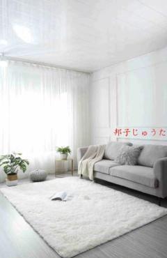 """Thumbnail of """"水洗いできます毛ベルベット寝室のリビングルームカーペット120*160cmm"""""""
