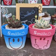 "Thumbnail of ""多肉植物♥smileリメ鉢♥ちょっぴり大きめ♥かき氷COLOR♥2個セット♥"""