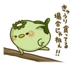 "Thumbnail of ""コトユケ様専用"""