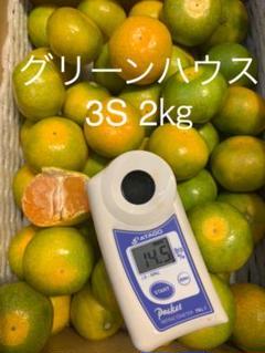 "Thumbnail of ""和歌山県 グリーンハウスみかん 2㎏"""
