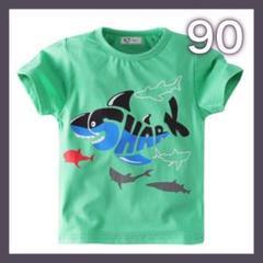 "Thumbnail of ""サメ Tシャツ 90 グリーン 男の子 夏服 キッズ 海 動物柄"""