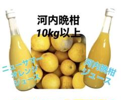 "Thumbnail of ""河内晩柑10キロ以上 ニューサマーオレンジジュース 河内晩柑ジュース"""