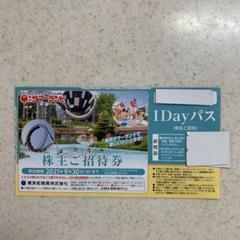 """Thumbnail of """"サマーランド 株主優待 9/30まで 2枚セット"""""""