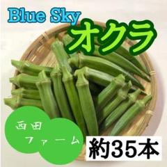 "Thumbnail of ""熊本県八代産 新鮮オクラ(ブルースカイ) 35本"""