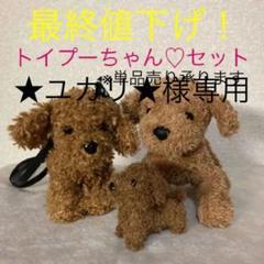"""Thumbnail of """"ぬいぐるみ トイプードル 3個 セット"""""""