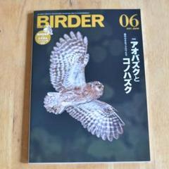 "Thumbnail of ""BIRDER 2021年6月号"""