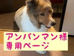 "Thumbnail of ""アンパンマン様専用ページ"""