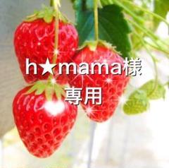 """Thumbnail of """"【美品】レディース ブラウス Mサイズ"""""""