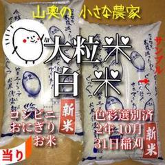 "Thumbnail of ""棚田の大粒米     新米  お米  玄米  10キロ「標準白米に精米」 超希少"""