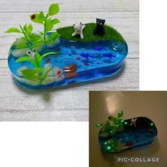 "Thumbnail of ""猫ちゃん達と夏の川♪♪"""