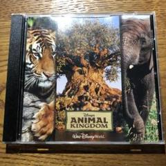 "Thumbnail of ""MusicFromDisney Animal Kingdom"""