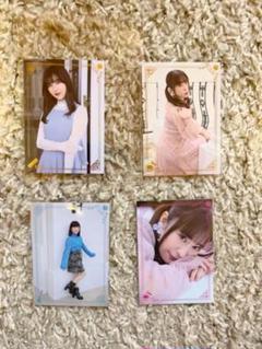 "Thumbnail of ""Edel Rose 4枚"""