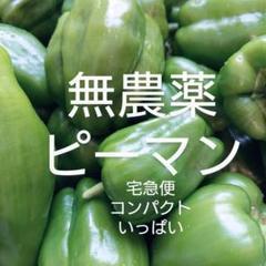 "Thumbnail of ""無農薬ピーマン 宅急便コンパクトいっぱい"""
