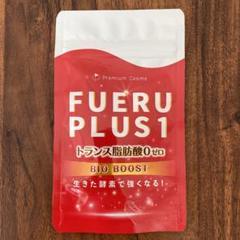 """Thumbnail of """"fueruplus1"""""""