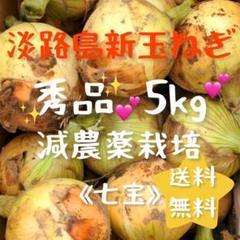 "Thumbnail of ""【期間限定】淡路島新玉ねぎ 農家直売"""