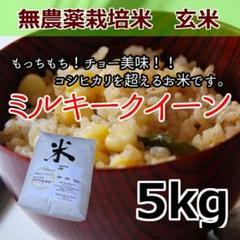 """Thumbnail of """"無農薬栽培米 ミルキークイーン 玄米 5kg"""""""