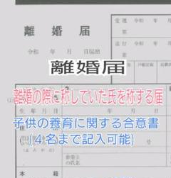 "Thumbnail of ""a-781 【普】 離婚届 各種届 詳細記入例 (お子様居る方用)"""