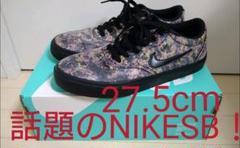 NIKE SB スケートボード スケボー Jordan DUNK スニーカー 靴
