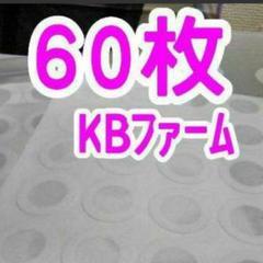 "Thumbnail of ""菌糸瓶フィルター60枚 タイペストシール 菌糸びん交換フィルター KBファーム"""
