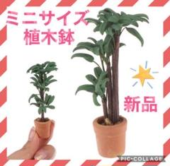 """Thumbnail of """"【✨新品未使用✨】ミニチュアサイズ 植木鉢 ツリー ドールハウス 可愛い 盆栽"""""""