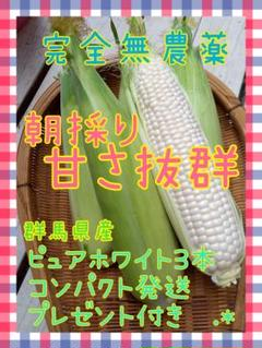 "Thumbnail of ""無農薬ホワイトとうもろこし3本"""