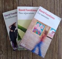 "Thumbnail of ""David Foenkinos 3 Livres"""