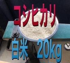 "Thumbnail of ""コシヒカリ白米20kg精米料無料"""