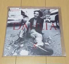 """Thumbnail of """"X JAPAN DAHLIA アナログピクチャー盤 レコード"""""""