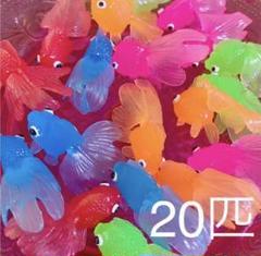 """Thumbnail of """"金魚すくい 金魚のみ20匹 おうち遊び 即購入OK"""""""