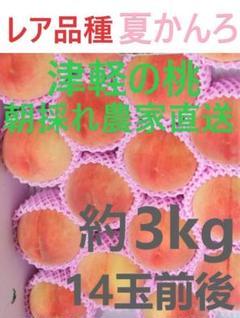 "Thumbnail of ""レア品種の桃 夏かんろ 13玉前後 約3kg 採れたて農家直送 数量限定"""