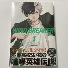 """Thumbnail of """"WIND BREAKER 1"""""""