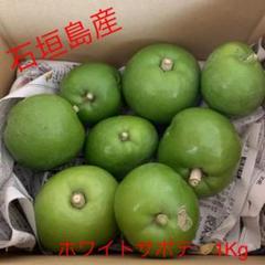 "Thumbnail of ""希少 石垣島産 ホワイトサポテ 1Kg"""