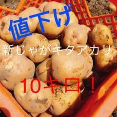 """Thumbnail of """"じゃがいも キタアカリ"""""""