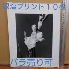 "Thumbnail of ""大四つ切 オリジナル銀塩プリント 10枚 バラ売り可"""