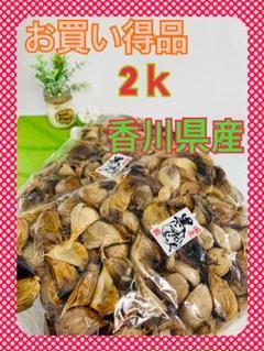 "Thumbnail of ""黒ニンニク 2キロ 香川県産"""
