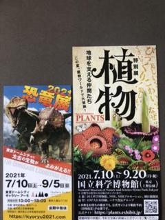 "Thumbnail of ""無料鑑賞券2枚"""