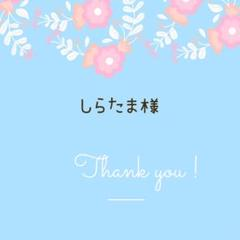 "Thumbnail of ""しらたま様 専用"""