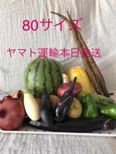 "Thumbnail of ""➀2日収穫分★無農薬★スイカ一個入り★野菜セット★ばあちゃんの野菜★本日発送"""