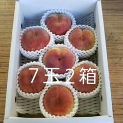 "Thumbnail of ""桃 あかつき 山形県産 7玉 3104"""