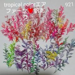 """Thumbnail of """"tropical colorエアファーン♥️訳あり 921"""""""