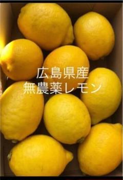 "Thumbnail of ""国産 レモン  広島県産  無農薬 レモン 瀬戸内レモン1.5kg"""